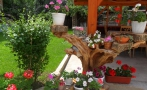 12. Picture on Vien Guest house Bansko